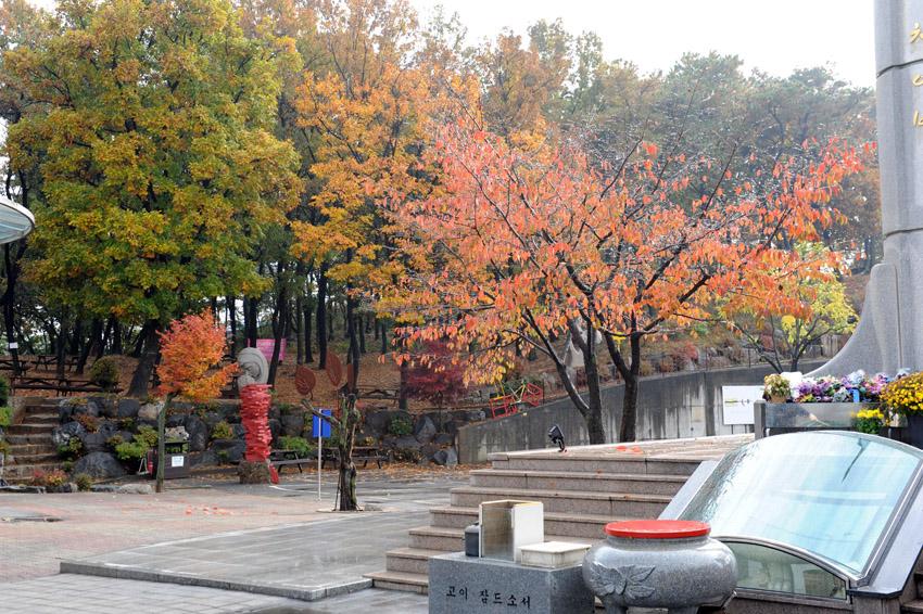 autumn31.jpg