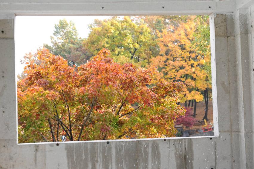 autumn51.jpg