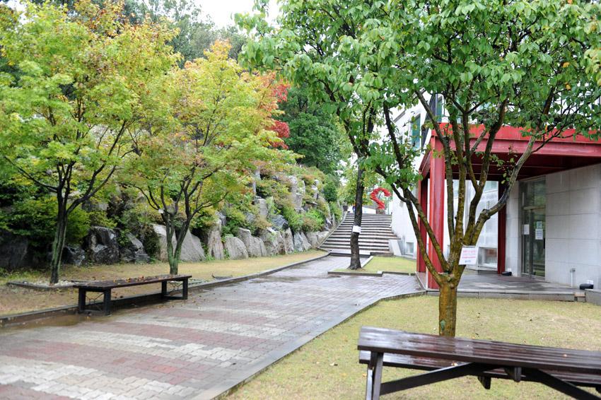 autumn_rain21.jpg