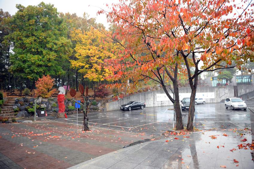 autumn_rain3.jpg